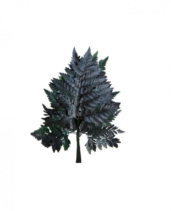 Botte de Fougère cuir 25-35 cm