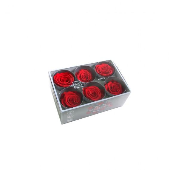 Tête de rose extra Rouge (boîte de 6)