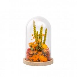 Cloche L Orange