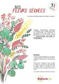 ILV - Fleurs Séchées