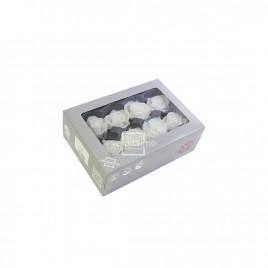 Tête de rose média Blanc (boîte de 8)