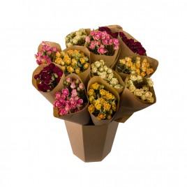 Seau Botte Tige Rose (peut varier selon arrivage)