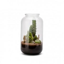 Bonbonne M Cactus