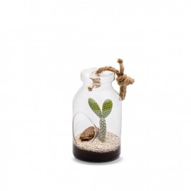 Bottle S Cactus