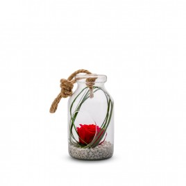 Verrine Bottle S