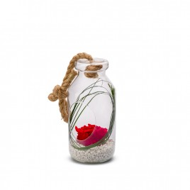 Verrine Bottle L