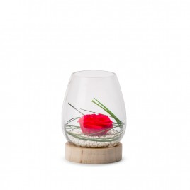 Verrine Tulip Wood M