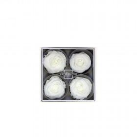 Tête de rose premium Blanc (boîte de 4)