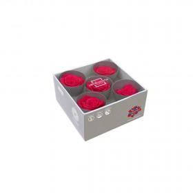 Tête de rose Queen Fuchsia (boîte de 5)