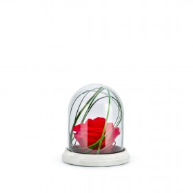 Cloche Ciment S Rouge