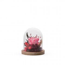 Cloche Stab S Mix Rose Pastel