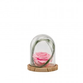 Verrine Cloche S bois - Rose pastel